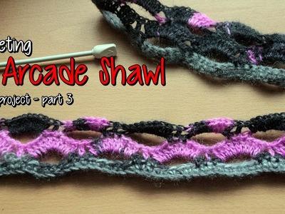 Crocheting an Arcade Shawl - part 3