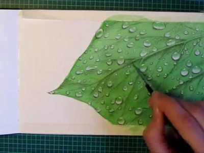 Watercolor Painting Time Lapse  - Waterdrops on a Leaf