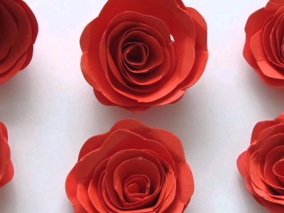 Hand made paper flowers - Curled Roses