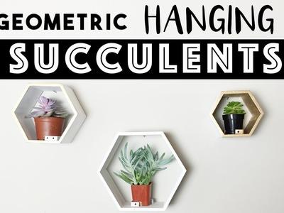 Geometric Hanging Succulents   Shelf Decor OR Hanging Garden?!