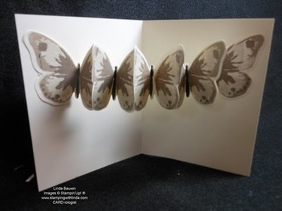 Creative Butterfly Fold Card