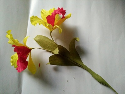 D.I.Y - How to make a paper Cattleya Orchid