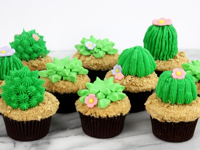 How to Make Succulent Cupcakes!