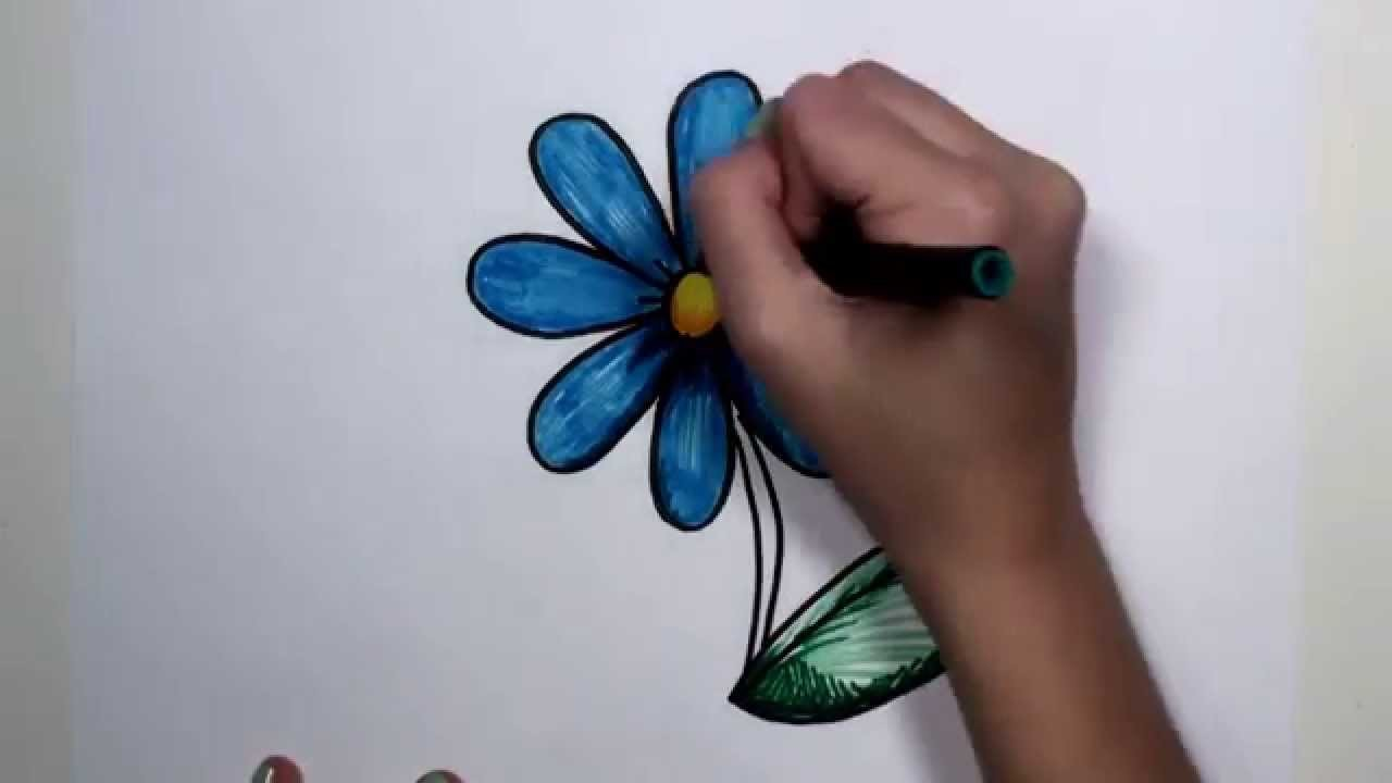 How to Draw Flower Step by Step - Blue Daisy Drawing Lesson MLT
