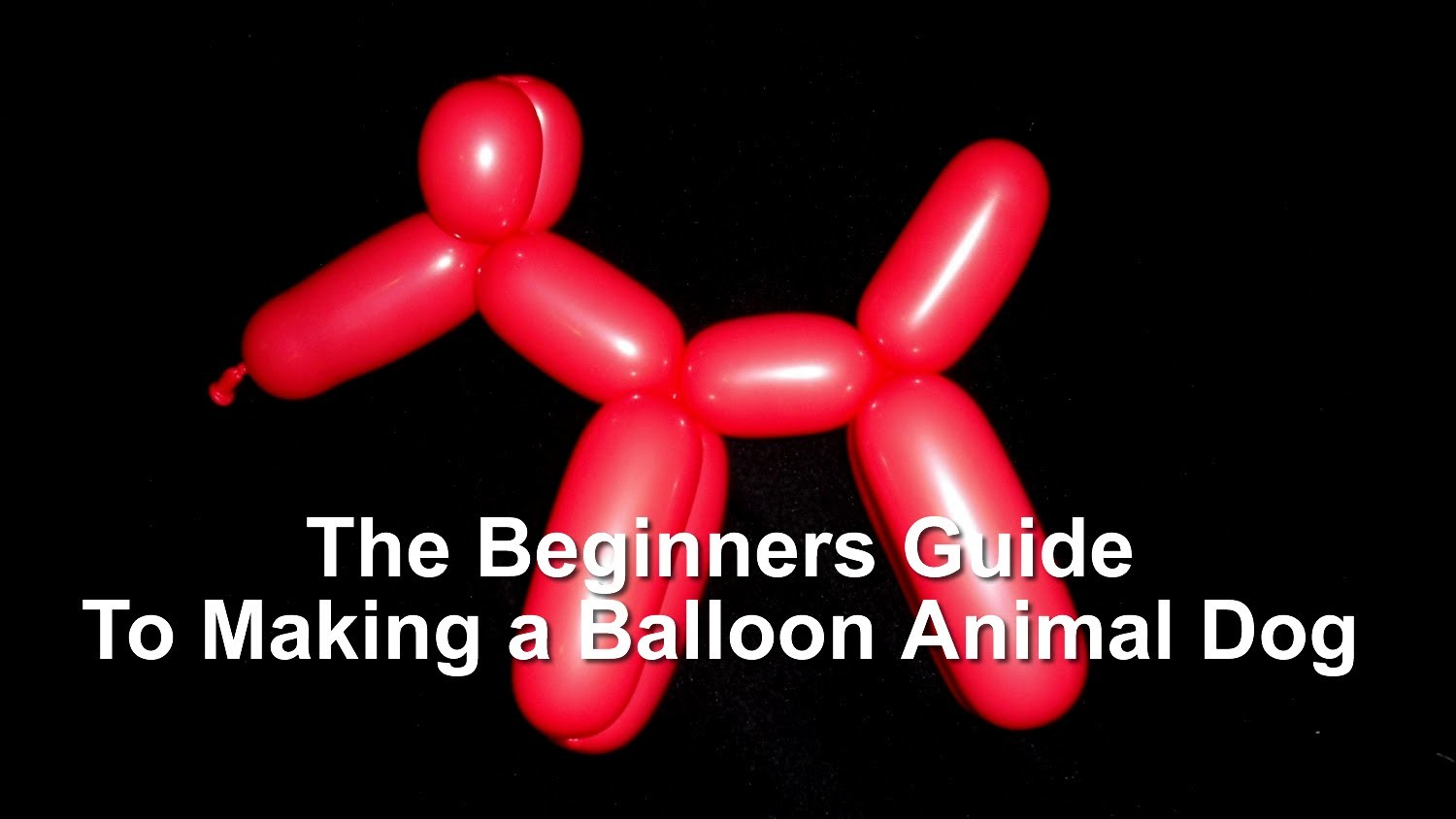 The Beginner's Guide to Making a Dog Balloon Animal