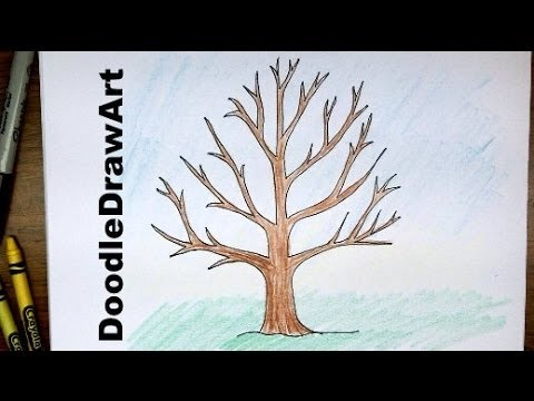 How To Draw A Tree Without Leaves -  Easy Drawing Tutorial for Beginners!