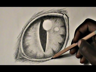 Step-by-Step: Drawing a Cat Eye