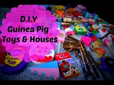 D.I.Y Guinea Pig Toys and Houses *November 2015*