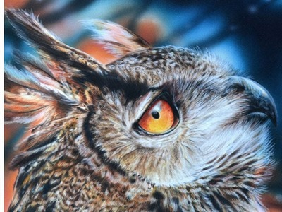 Drawing an Owl in polychromos colored pencil w. airbrush - photorealistic demo by Lachri