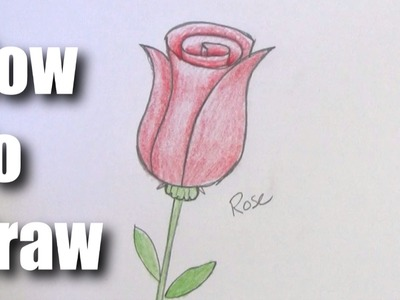 How To Draw A Rose - Easy Step by Step For Beginners