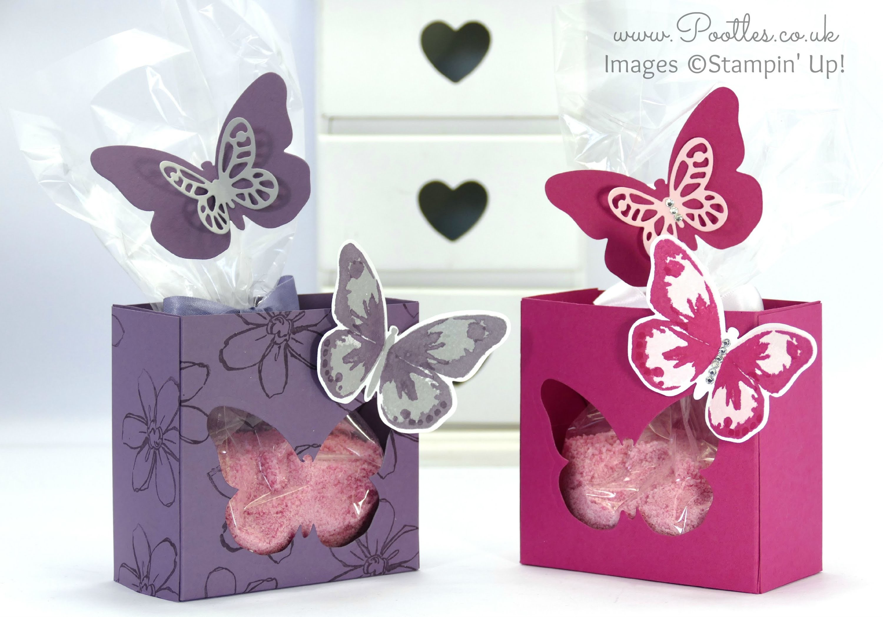 Bold Butterflies Big Box. Amended on Camera.