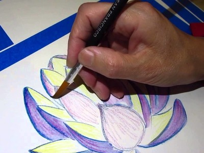 Drawing lotus with watercolor pencil