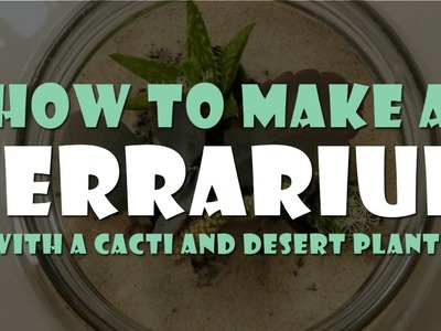 DIY: HOW TO MAKE A TERRARIUM WITH CACTI AND DESERT PLANTS