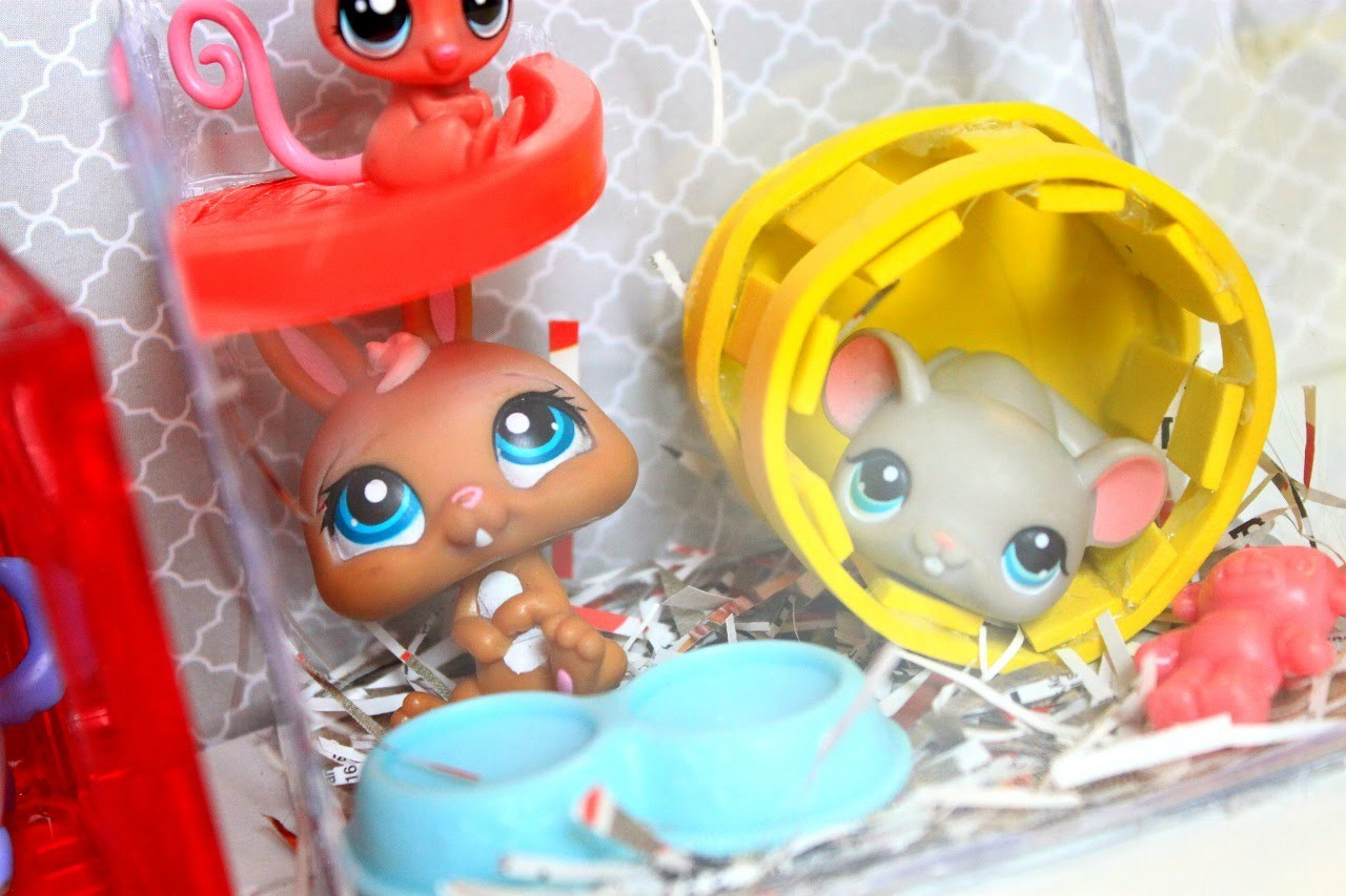 DIY LPS hamster cage   DOLL DIY