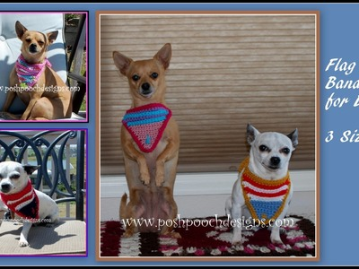 How to Crochet a Flag Bandanna for your Dog