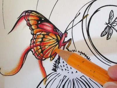 EASY COLOURING TUTORIAL: How to colour a Butterfly with coloured pencils