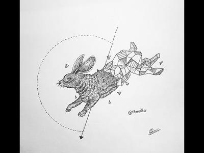 How to draw a geometrical rabbit