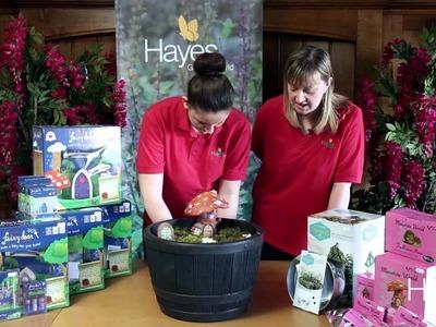 How to make a fairy garden | Hayes Garden World