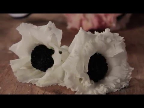 Spray Tips:  How To Make Faux Anemones with Design Master Flat Black