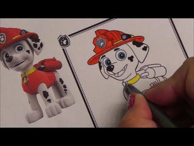 HOW TO BASIC - COLOR PAW PATROL MARSHALL DOG