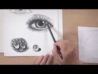 Drawing Basics - How to See, How to Draw - DVD with Claudia Nice