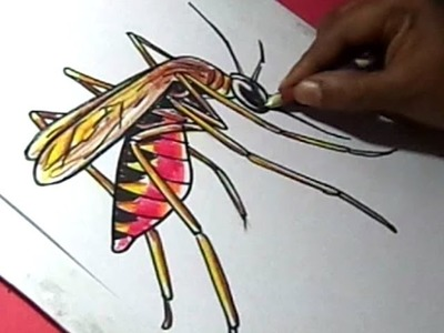 How to Draw Malaria Mosquito Drawing for kids Step by Step