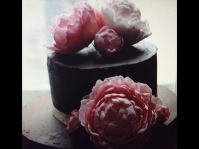 How to make a Peony Rose with Floral Paste