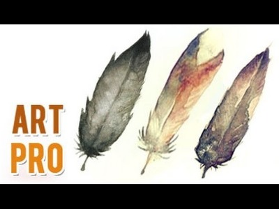 How to paint feathers with watercolors  step by step