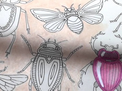 Adult Coloring With ILene Vick: How To Color Bugs To Make Them Look Like Shiny Gems and Jewels