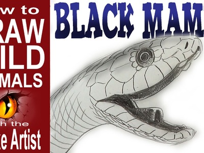 How to Draw a Black Mamba (beginner - intermediate)