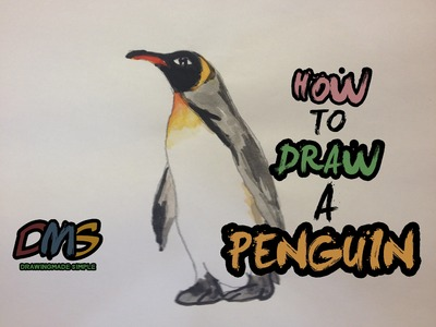 How to Draw a Realistic Penguin (Watercolour)