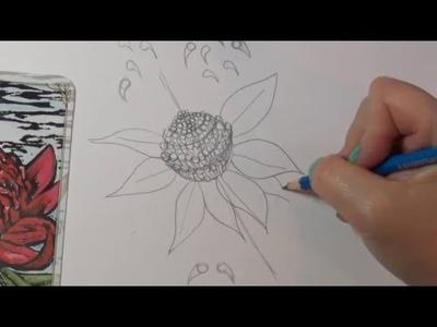 How to Draw Flowers ~ How to Draw a Waratah