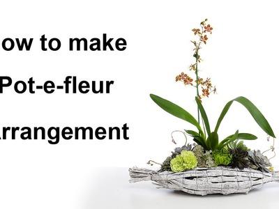How to make a Pot-e-fleur arrangement - featuring orchid and succulent -