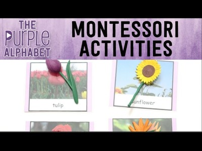 How to Use Montessori 3 Part Lesson and Cards