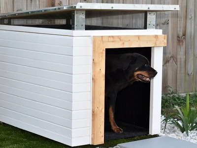 Making A Modern Dog House | How to