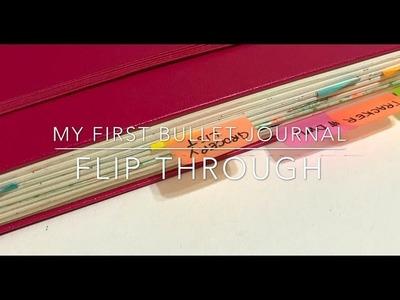 My First Bullet Journal Flip Through