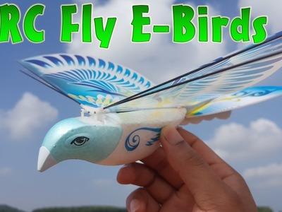 RC Fly E-Birds Airplane