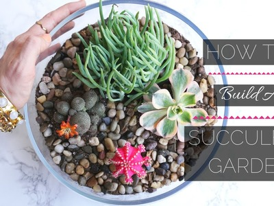 How To Build A Mini Succulent Garden