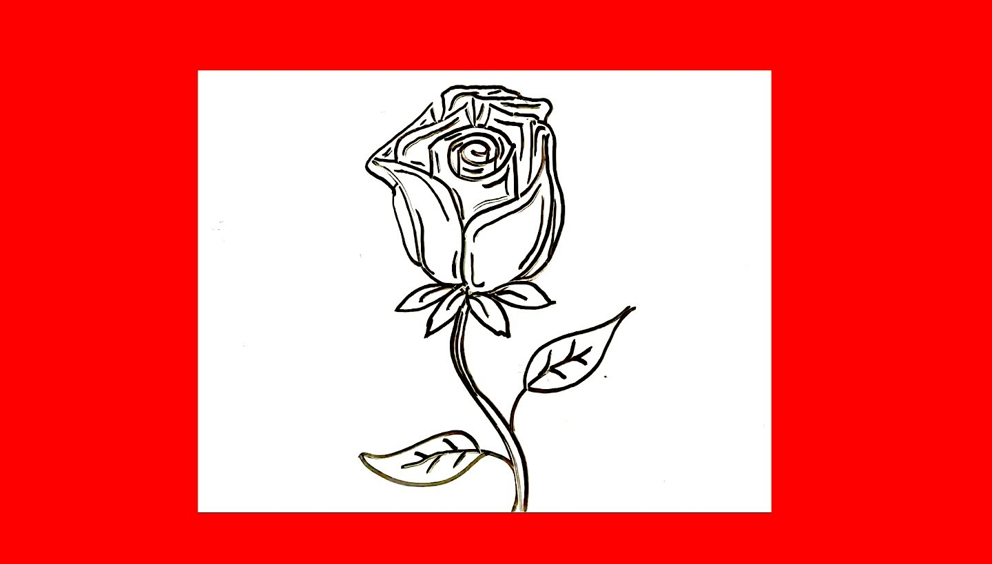 How To Draw A Rose For Beginners · Flower Easy Drawing Flowers Tutorial  Easy Drawings Step