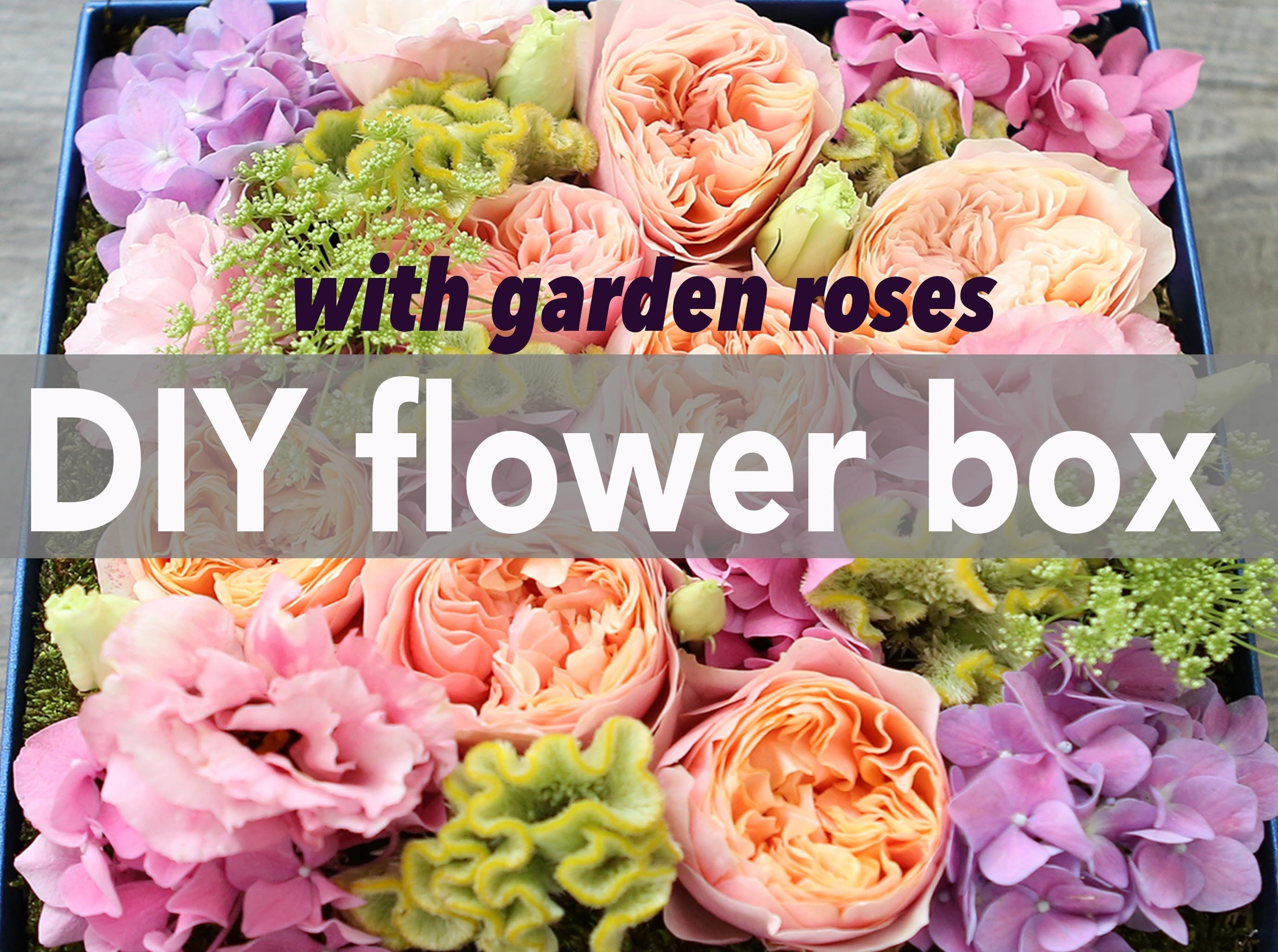 How to make a flower box with salmon garden roses