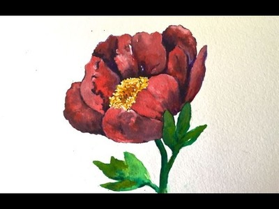 How to paint a Peony flower with watercolor, step by step tutorial