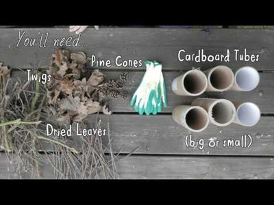How to build a Bug Hotel - Wildlife Connections