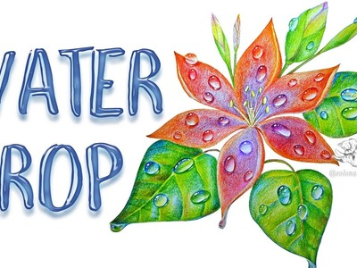 How to Draw a Flower with Water Droplets or Dew | Colored Pencil Techniques