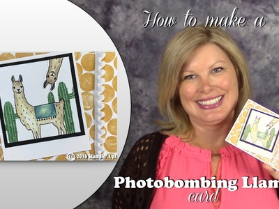 How to make a Photobombing Llama card featuring Stampin Up Birthday Fiesta Stamps