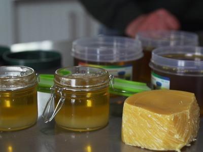 How To Make Organic Pruning Paste & Organic Hand Cream