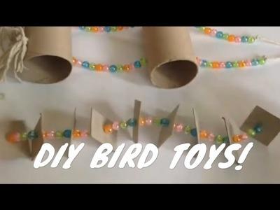 DIY BIRD TOYS!