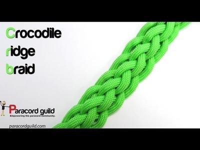 6 strand crocodile ridge braid