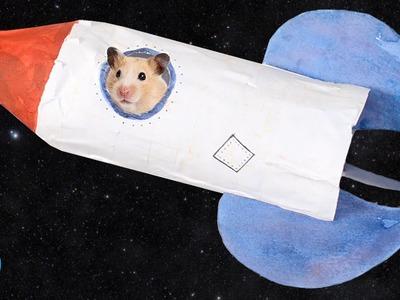 DIY Rocket Ship Hamster House