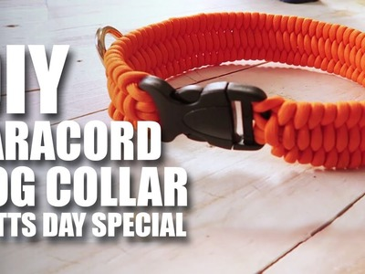 Mad Stuff With Rob - DIY Paracord Dog Collar | National Mutts Day