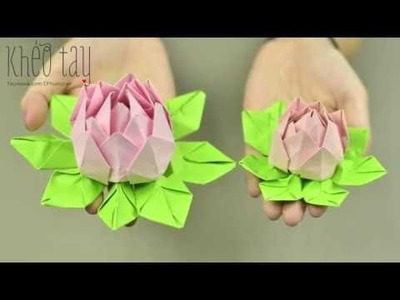 Paper Lotus | Paper flower Tutorial | Creative DIY